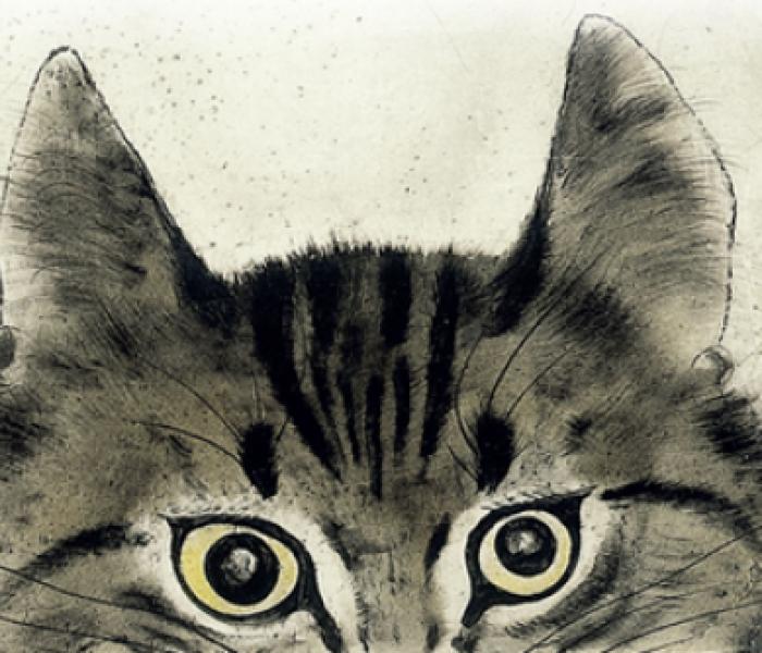 """""""Il gatto venuto dal cielo"""" di Hiraide Takashi"""