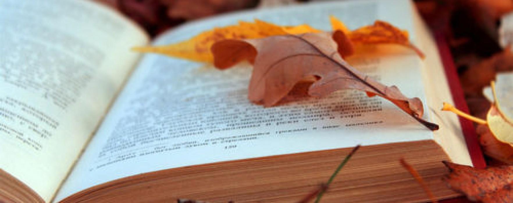 Autunno di libri: da BookCity Milano al Pisa Book Festival ecco gli eventi letterari da qui alla fine del 2015