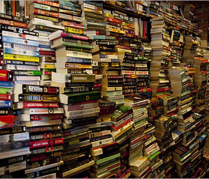 La libreria con le pareti di…libri